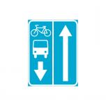 LM 527b - Ühissõiduki- ja jalgrattarajaga tee